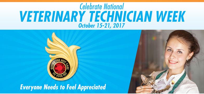 National Veterinary Technician Week Brown Originals